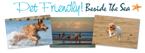 Pet Friendly Holidays Beside The Sea