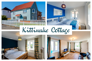 kittiwake-cottage-postcard