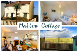 mallow-cottage-postcard