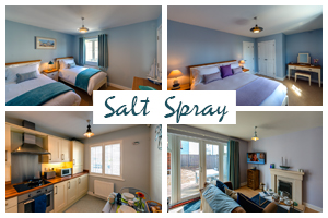 salt-spray-postcard