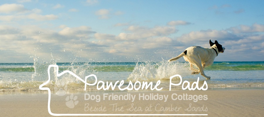 dog friendly camber sands holiday cottages