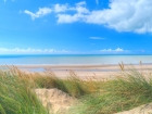 camber aug 1
