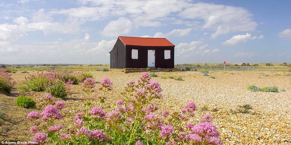Rye Harbour Nature Reserve, where birdwatching is a favorite thing to do in Camber Sands