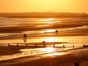 golden glow camber sands