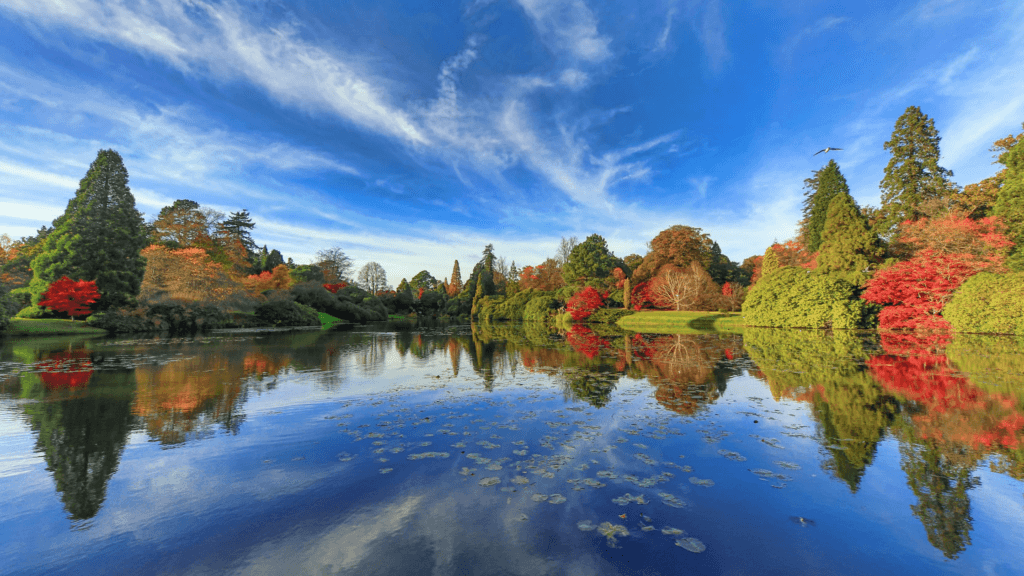 Sheffield Park & Gardens in East Sussex
