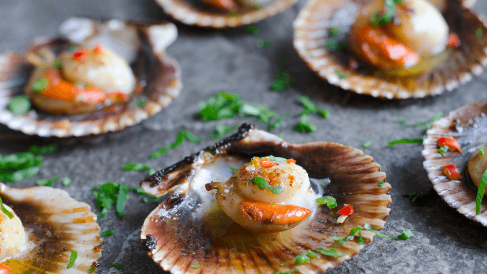 Scallops are a prolific produce of East Sussex, most notably Rye