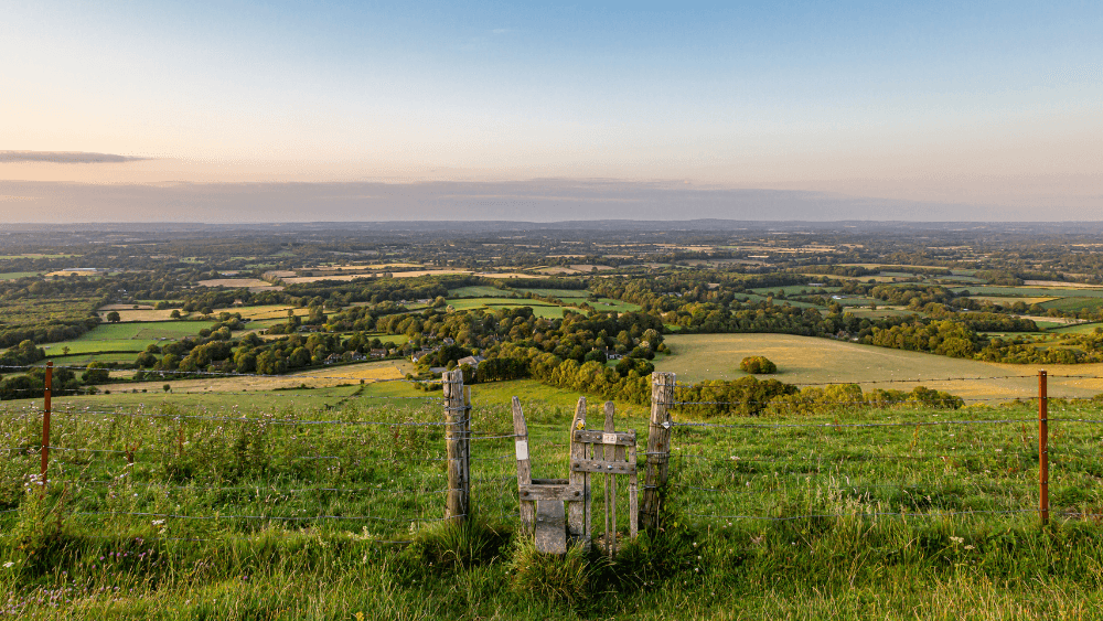 Dog walks on Ditchling Beacon