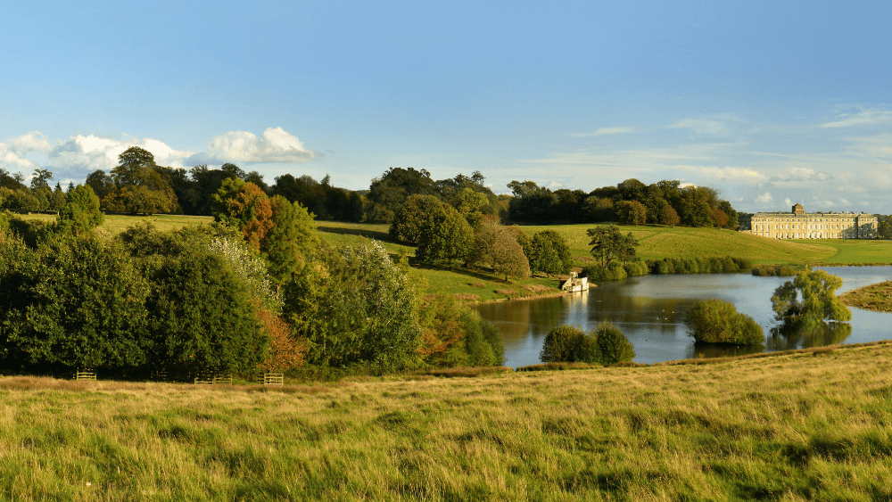 Dogs walks around Petworth House grounds